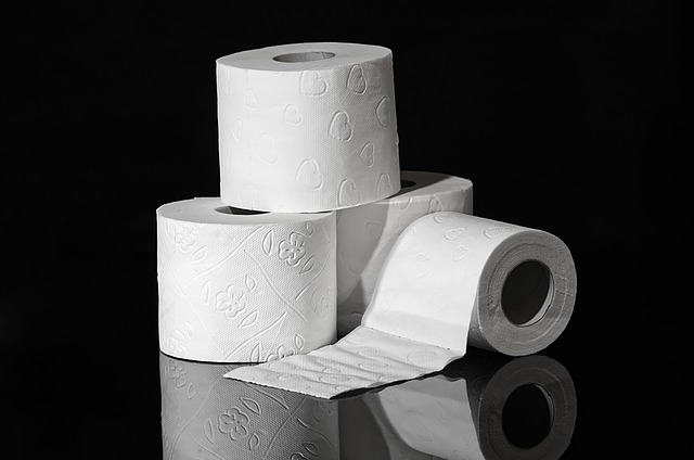 toaletní papír